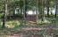 Path through woods to lake