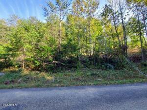 19 Acres Gunter Corner Rd, Parrottsville, TN 37843