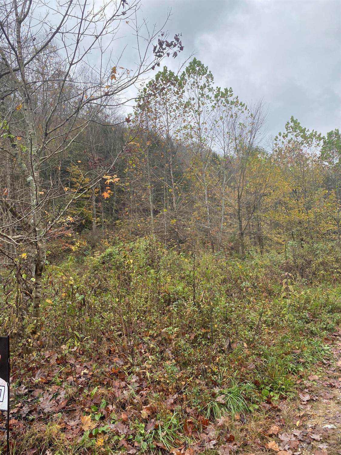 9999 Buffalo Creek Bullskin Rd, Booneville, KY 41311