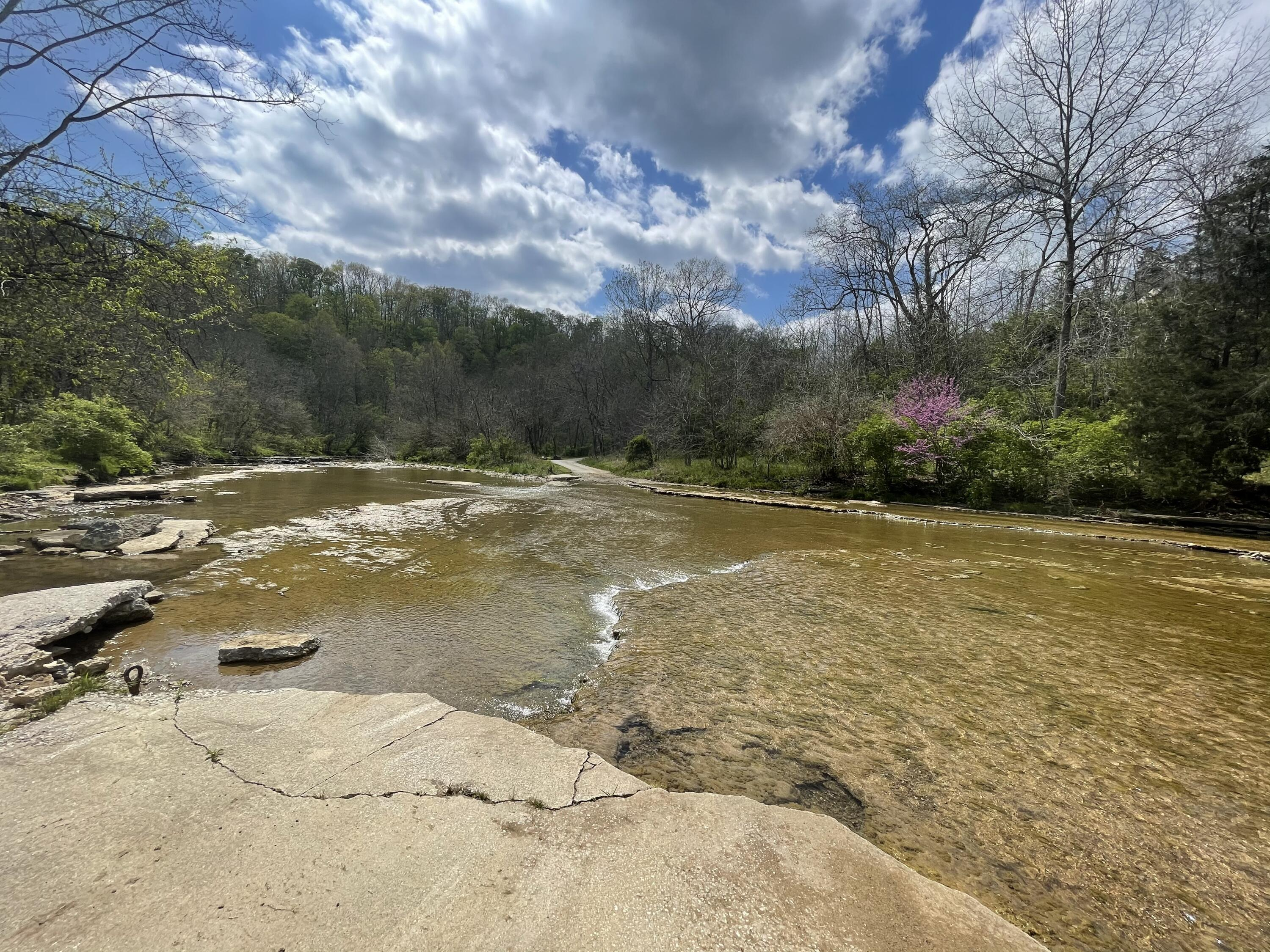 8355 Four Mile Road, Winchester, KY 40391