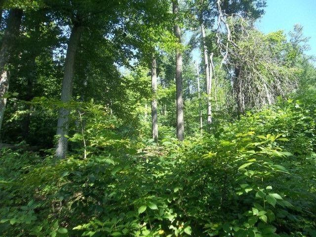 Lot 9 Promise Land Drive, Grayson, KY 41143