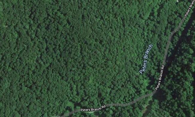 0 Peter Branch of Wolf Creek, Hyden, KY 40437