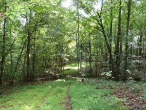 1 Timber Creek Lane, Monticello, KY 42633