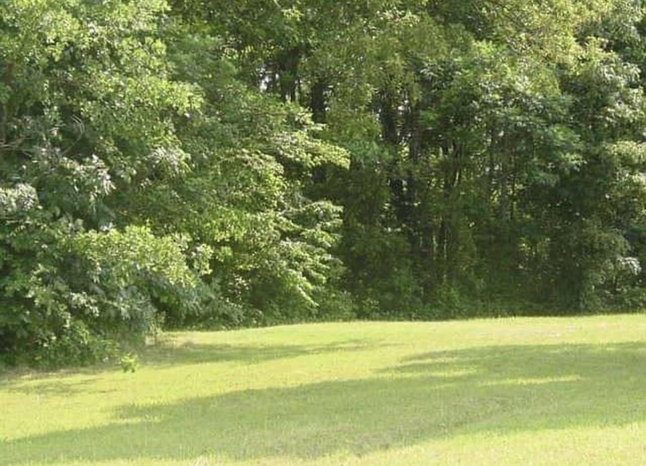 268 Willow Oaks Drive, Nancy, KY 42544