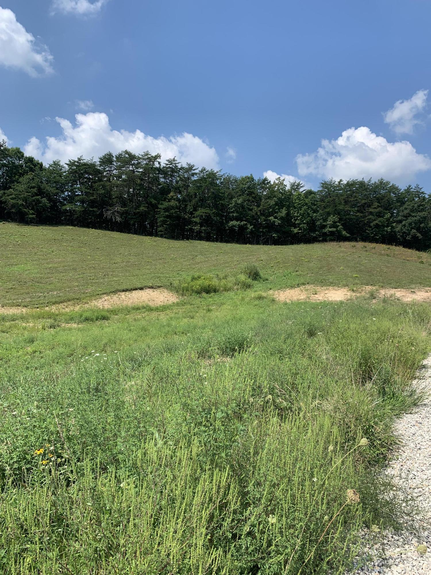1180 Clay Lick Road, Jeffersonville, KY 40337