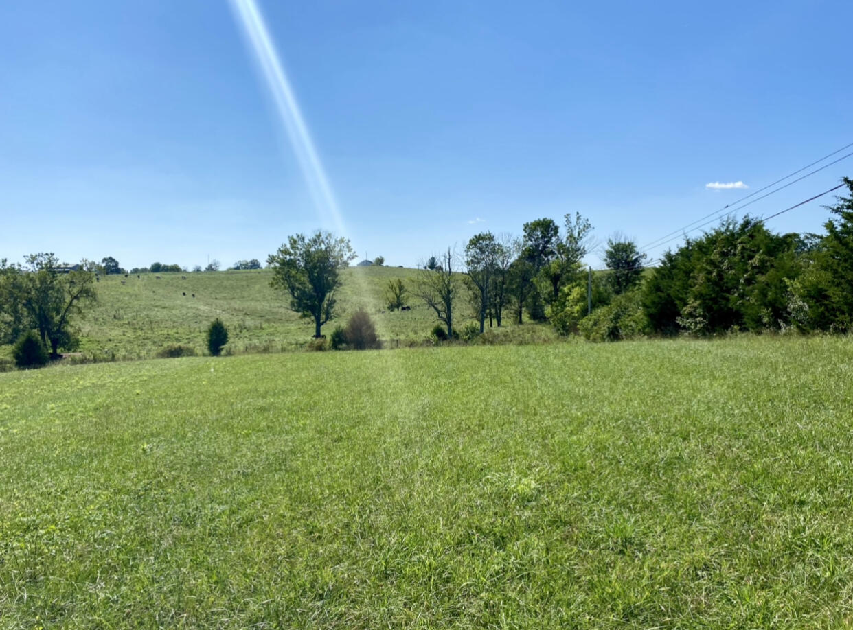 11600 Springfield Rd. Road, Perryville, KY 40468