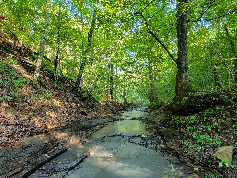 1600 Indian Creek Road, Hillsboro, KY 41049