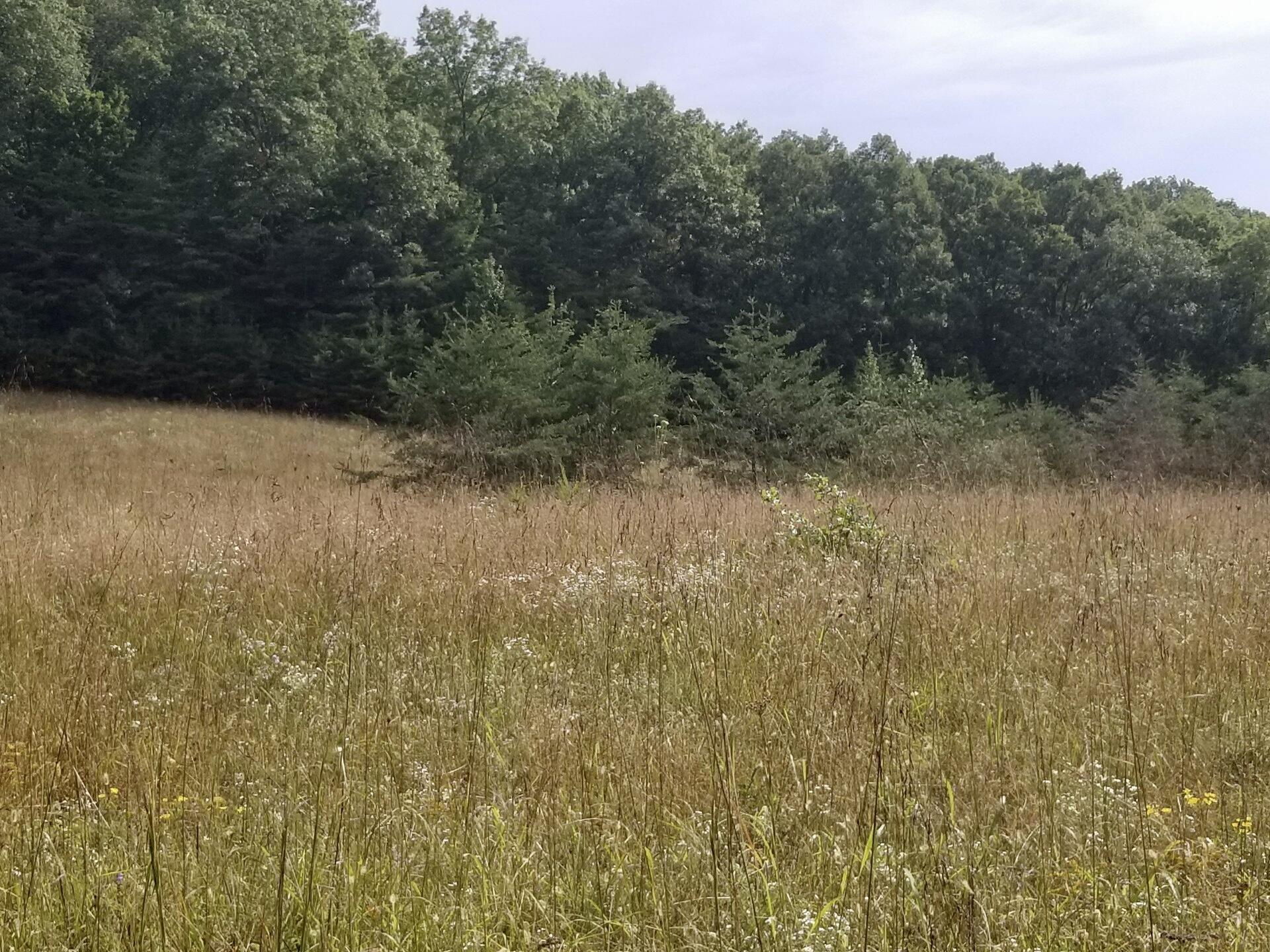 123 Bowen Spur Road, Stanford, Kentucky 40484, ,Farm/land,For Sale,Bowen Spur,20120331
