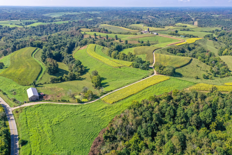 0000 Buckeye Rd Road, Lancaster, Kentucky 40444, ,Farm/land,For Sale,Buckeye Rd,20120466
