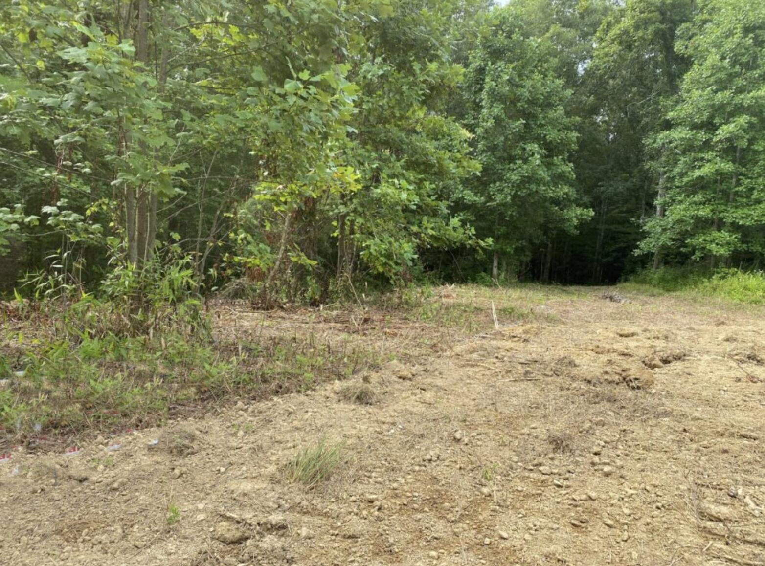 6 Moonbow Falls, Parkers Lake, KY 42634