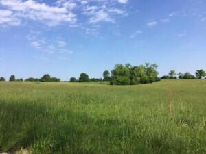 2075 Chrisman Mill-Lot #5 Road, Nicholasville, Kentucky 40356, ,Farm/land,For Sale,Chrisman Mill-Lot #5,20120807
