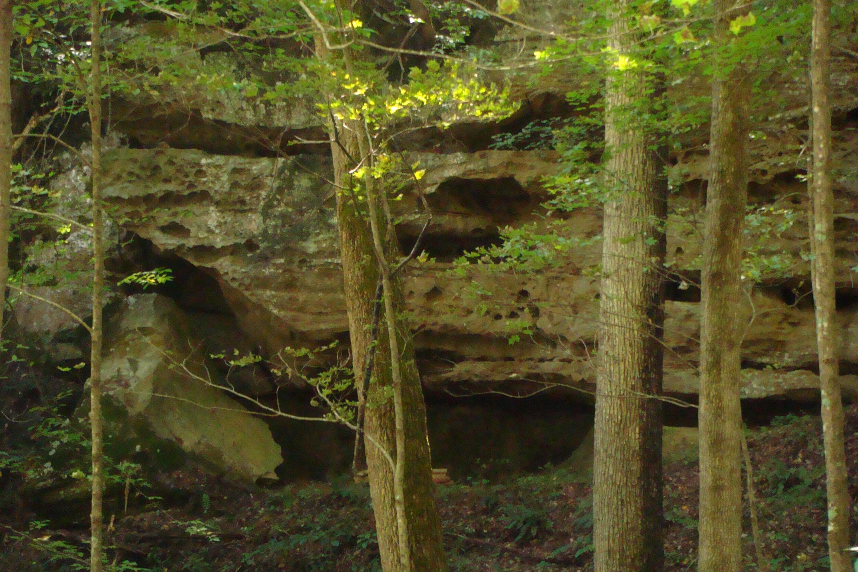 1 Brushy Fork Bird Ridge, Denniston, KY 40316