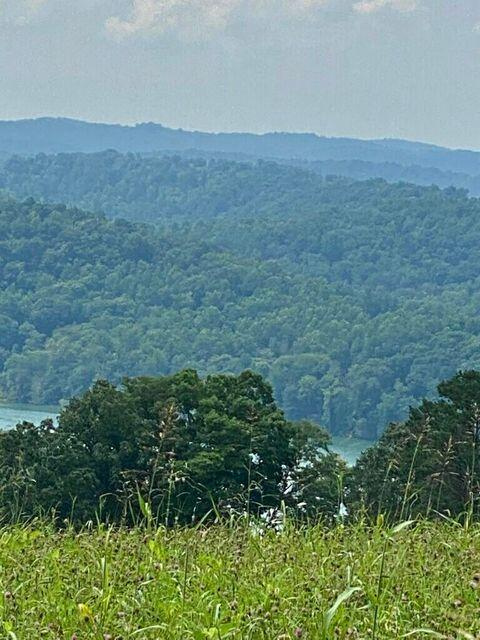 1476 Flat Hollow Road, Speedwell, KY 40475