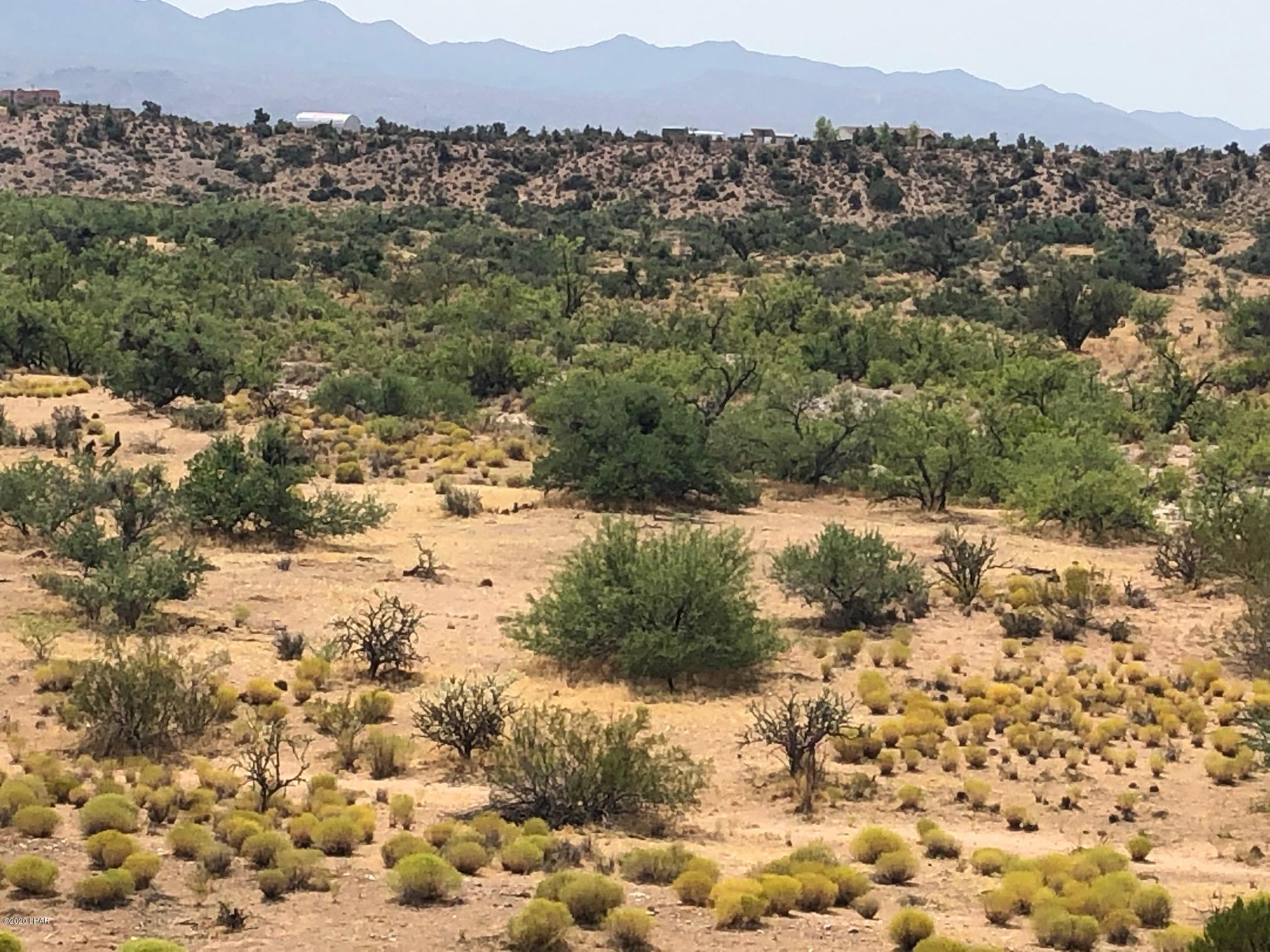 Details for Lot 7 Tin Mountain, Kingman, AZ 86401