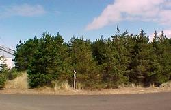 2614 Bayshore Loop NW, Waldport, OR 97394 - Listing Photo