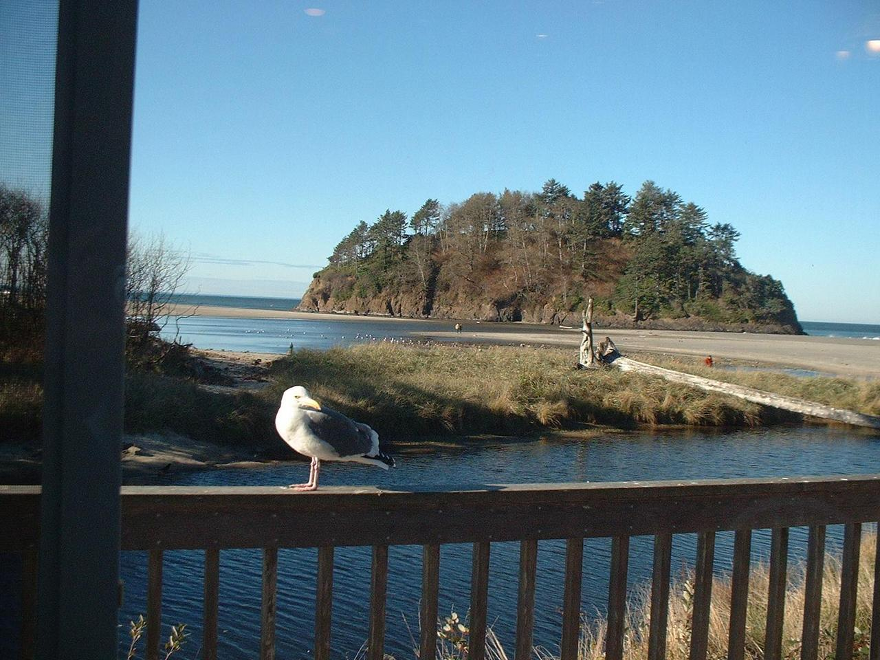 49000 Hwy 101, Unit A, Neskowin, OR 97149 - Listing Photo
