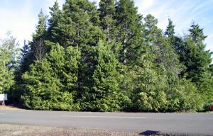 LOT 9 Seagrove Loop, Gleneden Beach, OR 97388 - Listing Photo