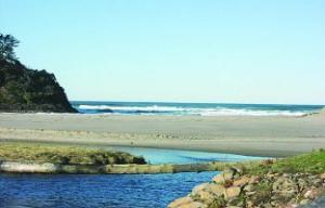 49002 Hwy 101, Share B, Neskowin, OR 097149 - Listing Photo