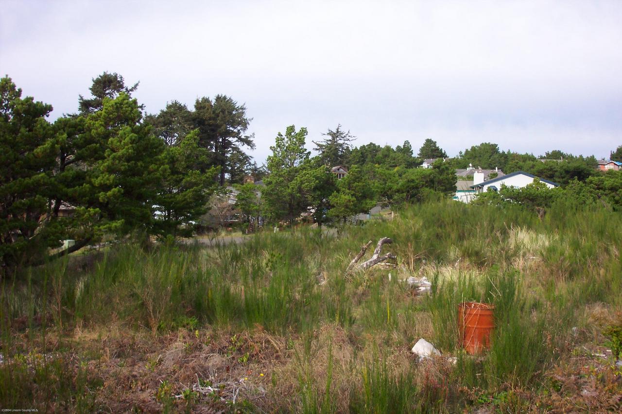 3018 NW Sandpiper Cir, Waldport, OR 97394-9497 - upper north edge looking north