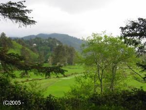 800 Neskowin Ridge, Neskowin, OR 97149 - Evergreen Ridge Lot
