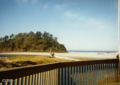 49000 Highway 101 S Unit A Rotation B, Neskowin, OR 97149-9732 - view of the beach