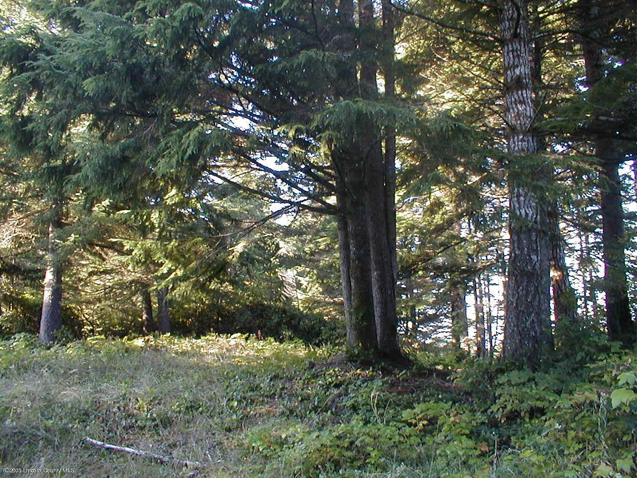 705 Highland # 707 Cir, Waldport, OR 97394 - Rucker Land