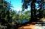 LOT # 3 Lotus Lake Drive, Waldport, OR 97394 - BEAUTIFUL PEACEFUL SETTING