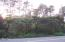 200 SW Abalone St, Newport, OR 97366 - Wooded lot -- seen from Coast Hwy.