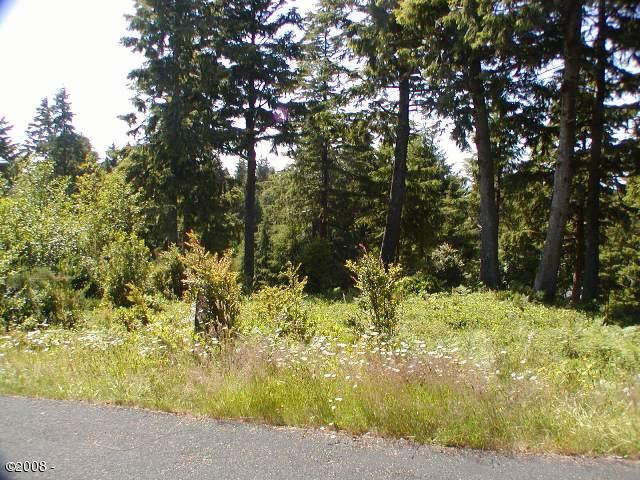 526 Eagles Nest Lane, Gleneden Beach, OR 97388 - Lot