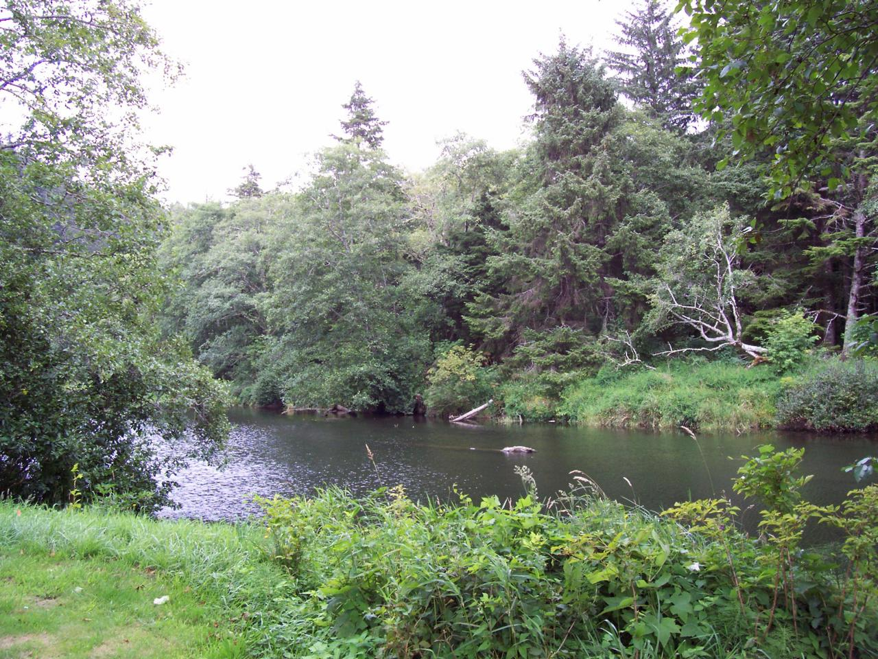 XXX Combs Circle, Yachats, OR 97498 - River front lot