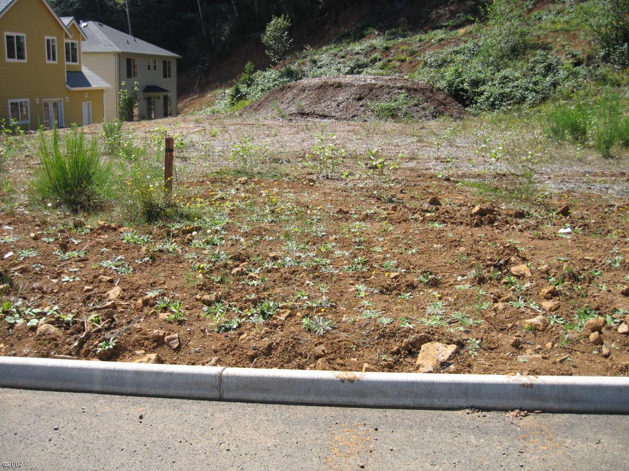 LOT 35 P2 Sea Star Drive, Depoe Bay, OR 97341 - Level  lot in