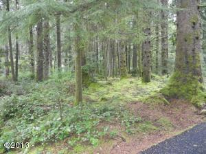 LOT 4 SW Walking Wood, Depoe Bay, OR 97341 - Lot 4 Walking Wood