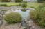 LOT 86 SW 58th St, South Beach, OR 97366 - Pond and water fall area