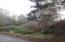 T/L 2100 Aeolian Way, Neskowin, OR 97149 - Spruce/Alder
