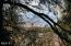 3545 Ridge Rd., Otis, OR 97368 - view through the trees