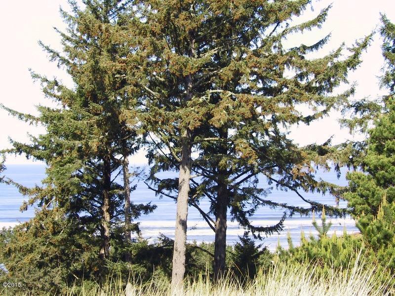 3706 NW Shore View Loop, Waldport, OR 97394 - Ocean Views