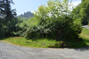TL 211 Knoll Terrace, Neskowin, OR 97149 - Lot from Street