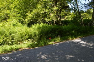 TL 214 Knoll Terrace, Neskowin, OR 97149 - Lot from Street