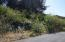 2000 BLK NE Mulberry Loop Lot 19, Lincoln City, OR 97367 - Lot 19 (2)