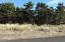 2913 NW Bayshore Loop, Waldport, OR 97394 - Lot before house from Bayshore Loop Side