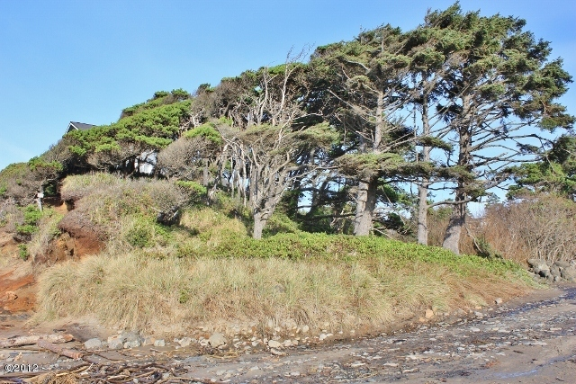 7200 LOT Wallace St., Gleneden Beach, OR 97388 - Site