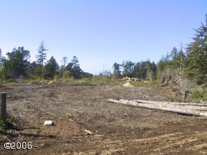1000 BLK NW West St, Seal Rock, OR 97376 - Ptn lot8-9