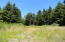 TL # 702 Stocker Road, South Beach, OR 97366 - building site