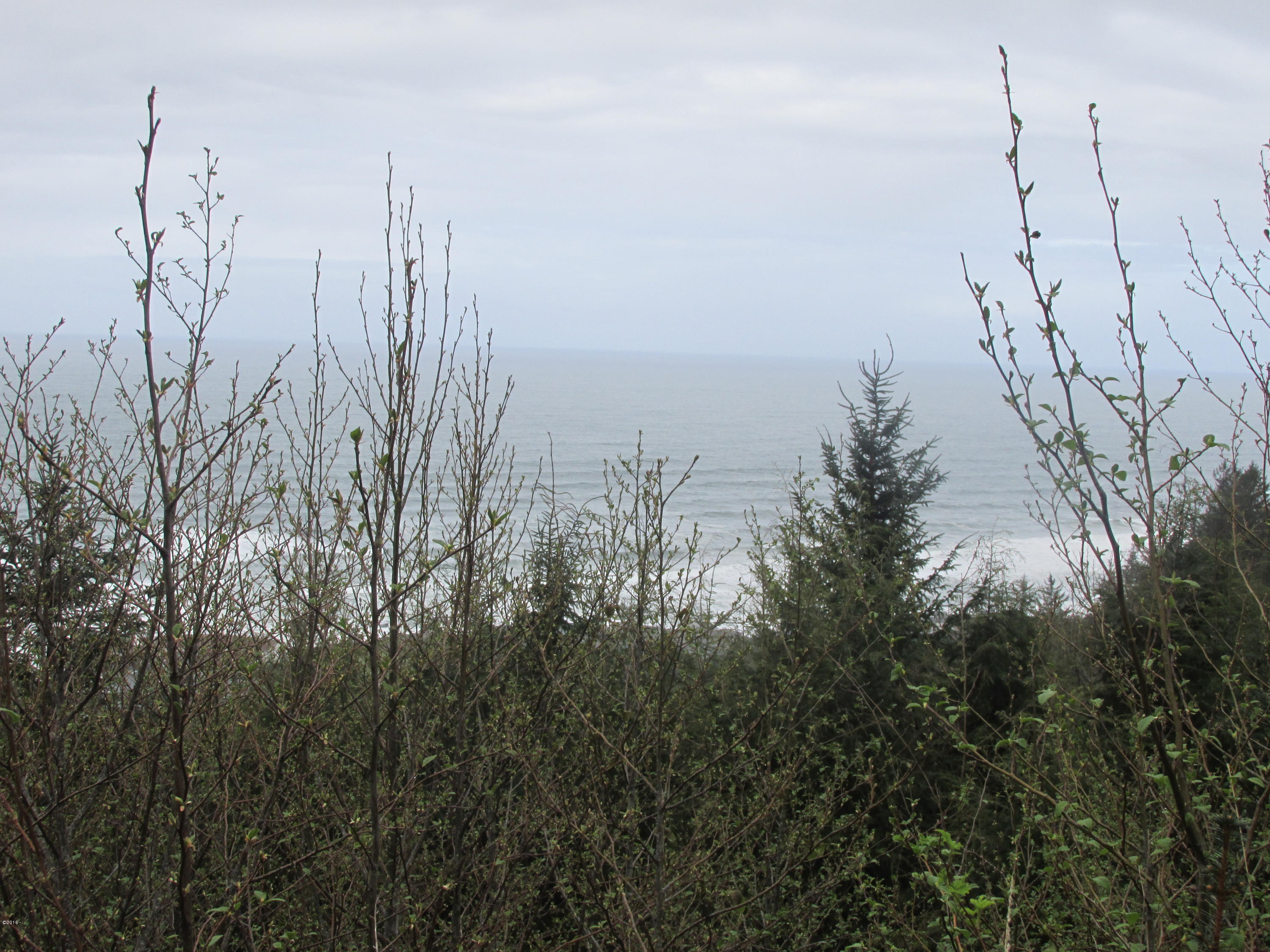 TL 6600 Gimlet Ln, Yachats, OR 97498 - OCEAN VIEW LOT 14