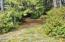 1100 Beachside Lane, Waldport, OR 97394 - Another Clearing!