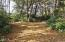 1100 Beachside Lane, Waldport, OR 97394 - Clearing for RV!