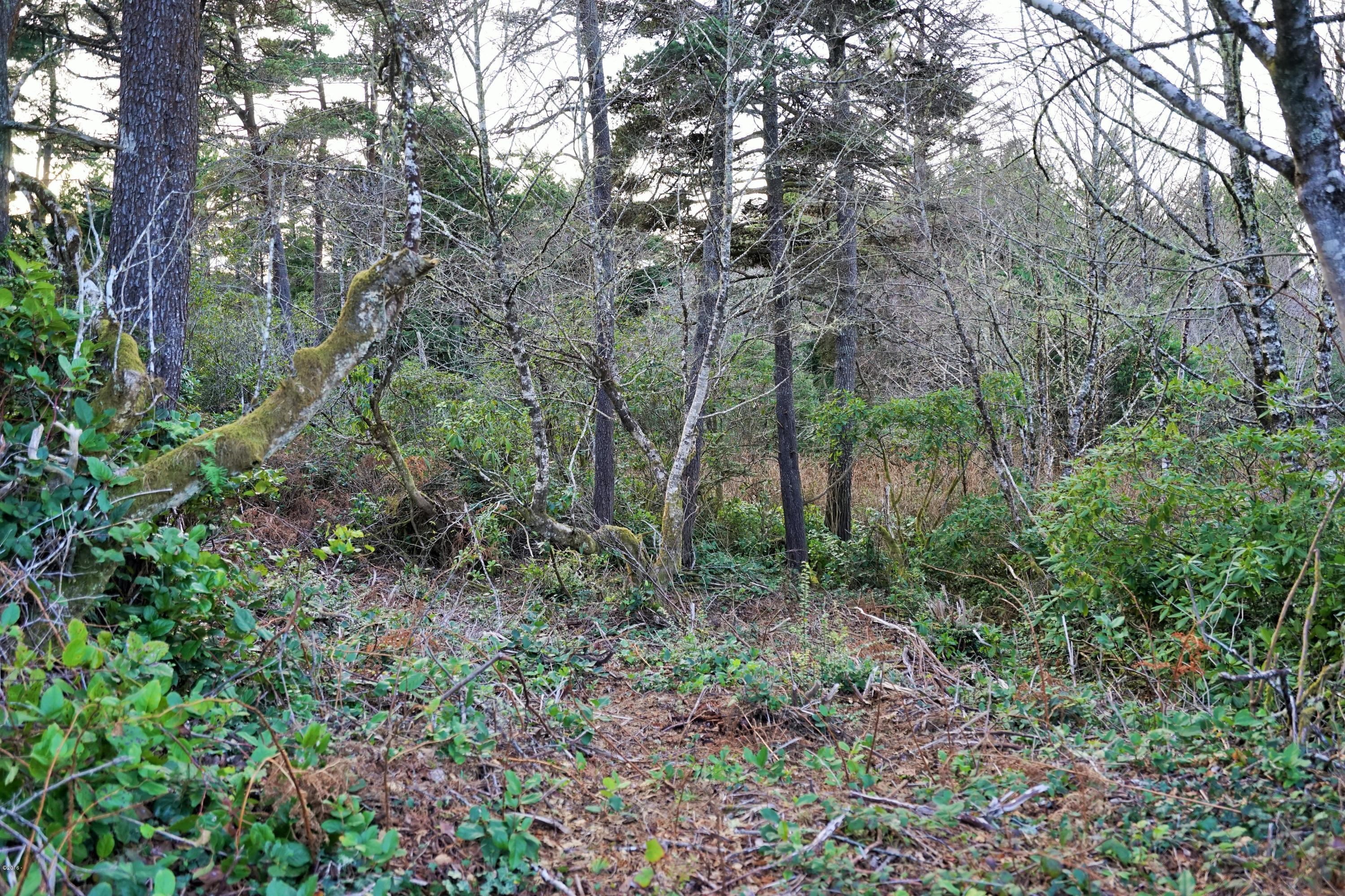 TL 1801 NW Crane St, Seal Rock, OR 97376 - Lot