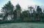 T/L 1000 SE Port Drive SE, Lincoln City, OR 97367 - Trees on S border