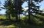 335 SE Evergreen Dr, Waldport, OR 97394 - Evergreen photo