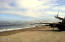 LOT 9 Beach Crest Dr, Neskowin, OR 97149 - 20140623_093944